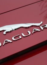 european auto specialists jaguar logo